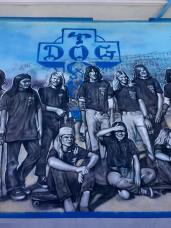 DOGTOWN ZBOYS MURAL SECTION