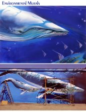 WHALES FULL SCALE MURAL